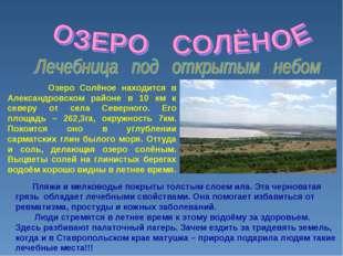 Озеро Солёное находится в Александровском районе в 10 км к северу от села Се