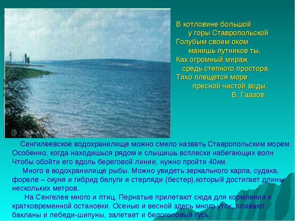 В котловине большой у горы Ставропольской Голубым своим оком манишь путников...