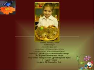 Убийко Анжела, 9 лет Композиция «Семейство ежей» номинация; «Оригинальная ид