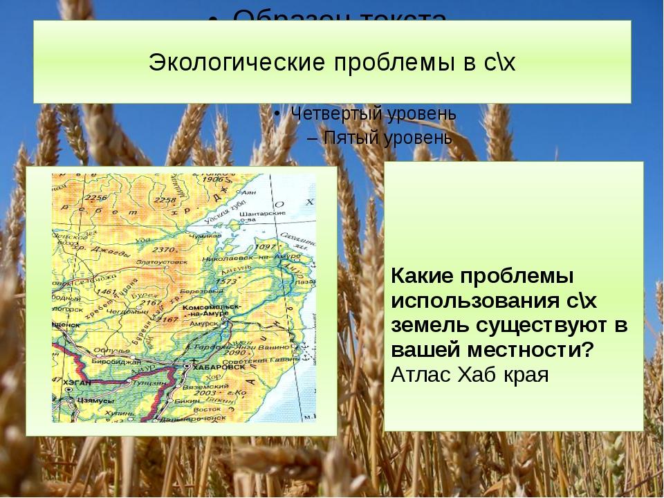 Экологические проблемы в с\х Какие проблемы использования с\х земель существу...