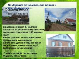 В настоящее время Д. Беляево относится к Кулангинскому сельскому поселению.