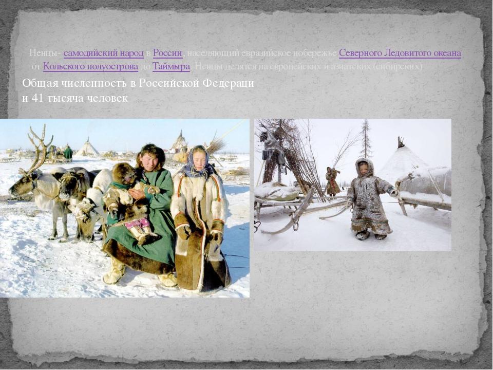 Ненцы-самодийский народвРоссии, населяющий евразийское побережьеСеверного...