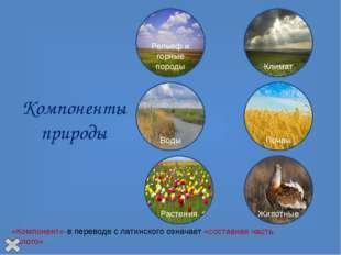 Природный комплекс (ПК) ПК – это закономерное сочетание компонентов природы: