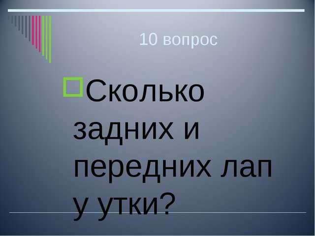 10 вопрос Сколько задних и передних лап у утки?
