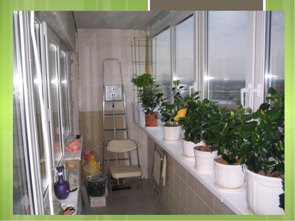 Зимний сад на балконе и лоджии своими руками: фото и видео.