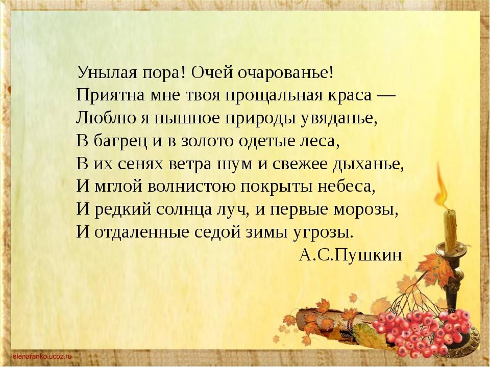 Администрация городского поселения Петров Вал