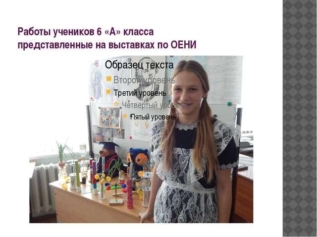 Работы учеников 6 «А» класса представленные на выставках по ОЕНИ