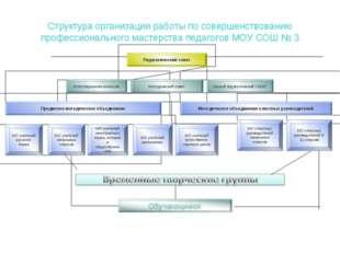 Структура организации работы по совершенствованию профессионального мастерств