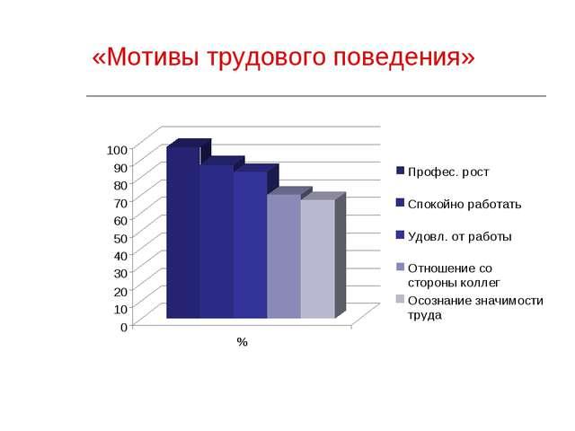 «Мотивы трудового поведения»