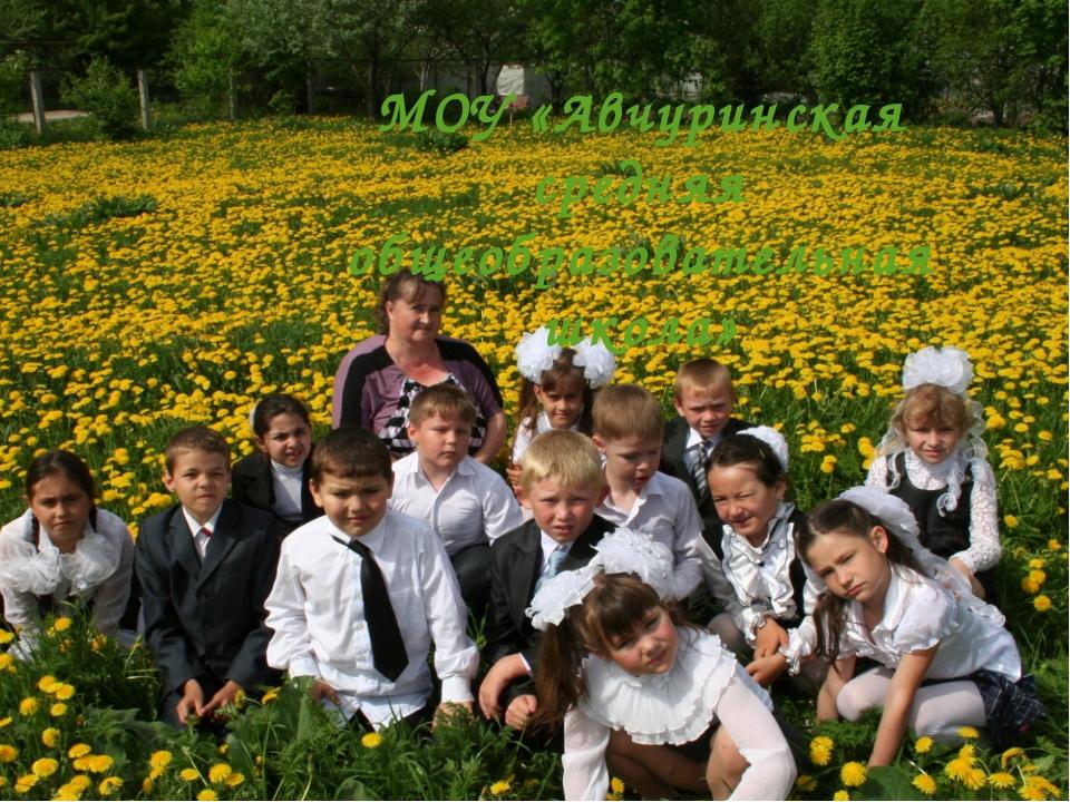 МОУ «Авчуринская средняя общеобразовательная школа»