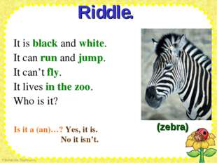 Riddle.  It is black and white. It can run and jump. It can't fly. It liv