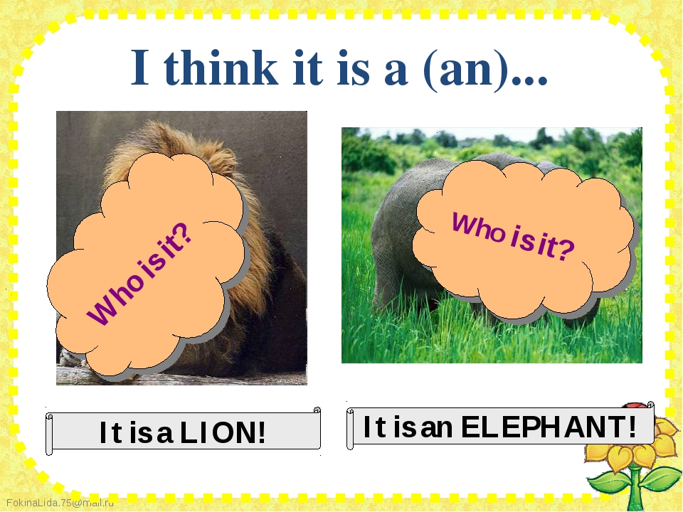 I think it is a (an)...
