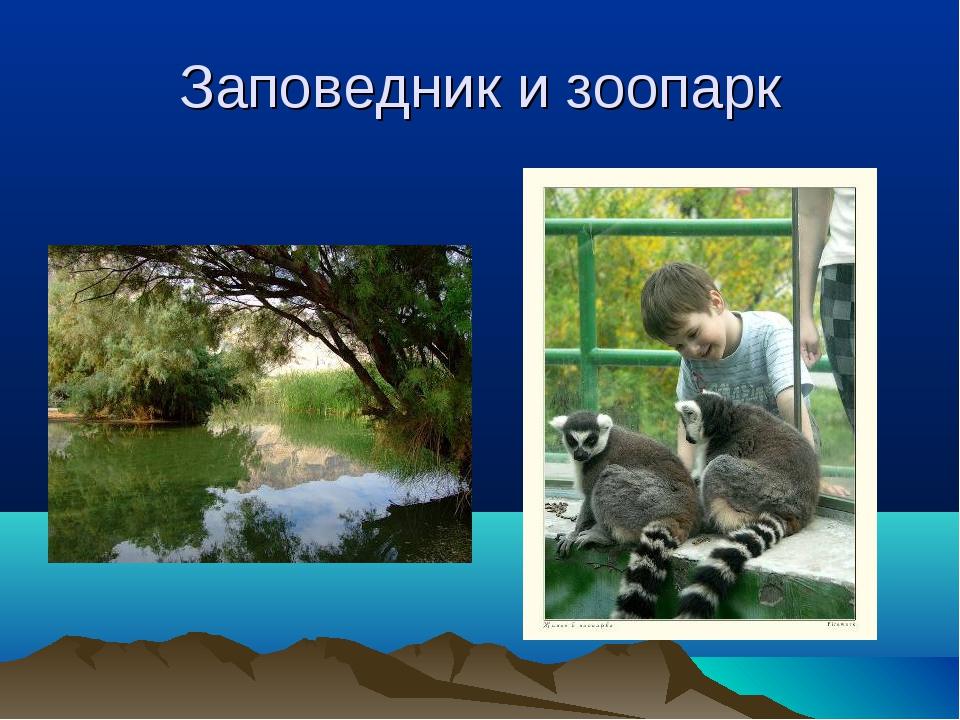 Заповедник и зоопарк