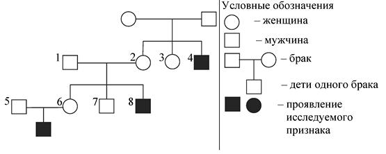 http://www.bio-faq.ru/ccc/ccc055pic1.png