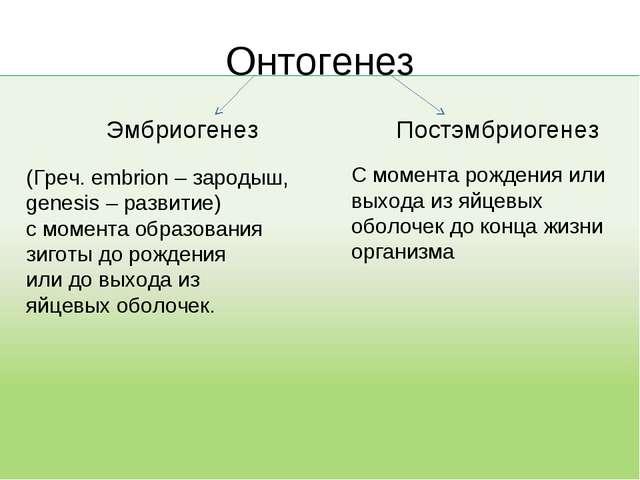 Онтогенез Эмбриогенез (Греч. embrion – зародыш, genesis – развитие) с момента...
