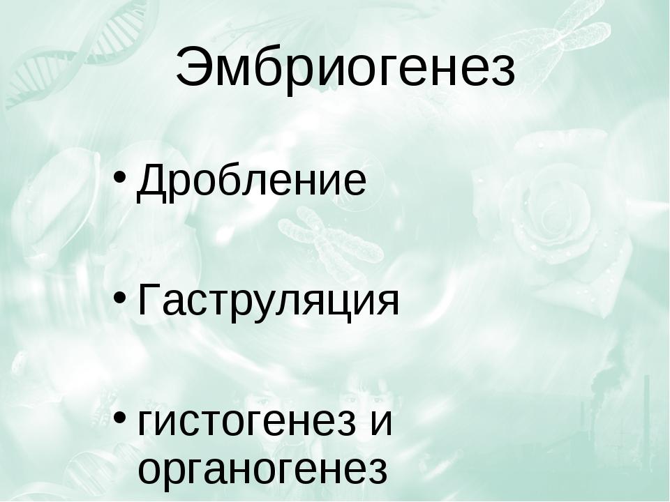 Эмбриогенез Дробление Гаструляция гистогенез и органогенез