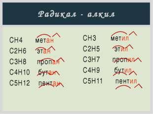 Радикал - алкил СН4 метан С2H6 этан C3H8 пропан C4H10 бутан C5H12 пентан CH3