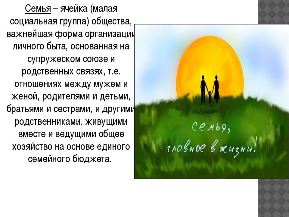 Семья – ячейка (малая социальная группа) общества, важнейшая форма организаци...
