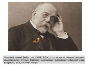 Немецкий ученый Роберт Кох (1843-1910г.г.) стал одним из основоположников мик