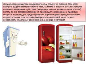 Сапротрофныебактерии вызывают порчупродуктов питания. При этом наряду с выд
