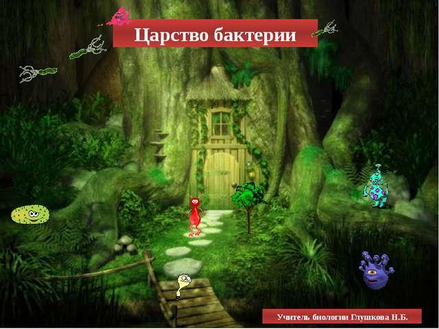 Царство бактерии Учитель биологии Глушкова Н.Б.