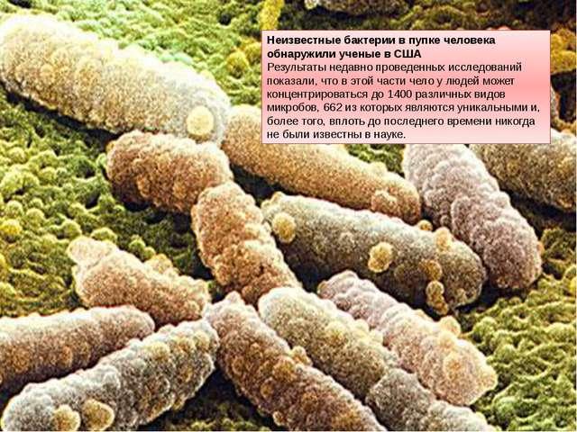 Неизвестные бактерии в пупке человека обнаружили ученые в США Результаты неда...