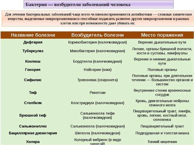 Для лечения бактериальных заболеваний чаще всего человеком применяются антиби...