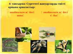 4- тапсырма: Суреттегі жануарларды тиісті орнына орналастыр: Қанайналым жүйе