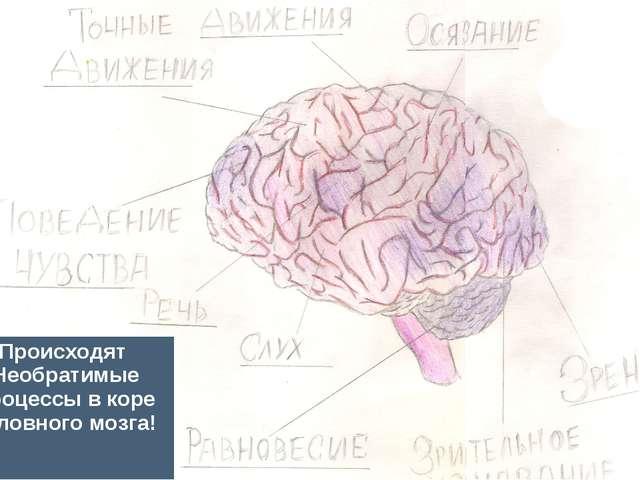 Происходят Необратимые процессы в коре головного мозга!