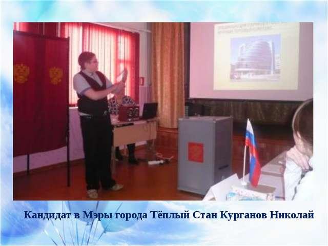 Кандидат в Мэры города Тёплый Стан Курганов Николай