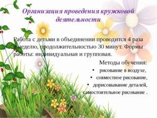 Организация проведения кружковой деятельности Работа с детьми в объединении п