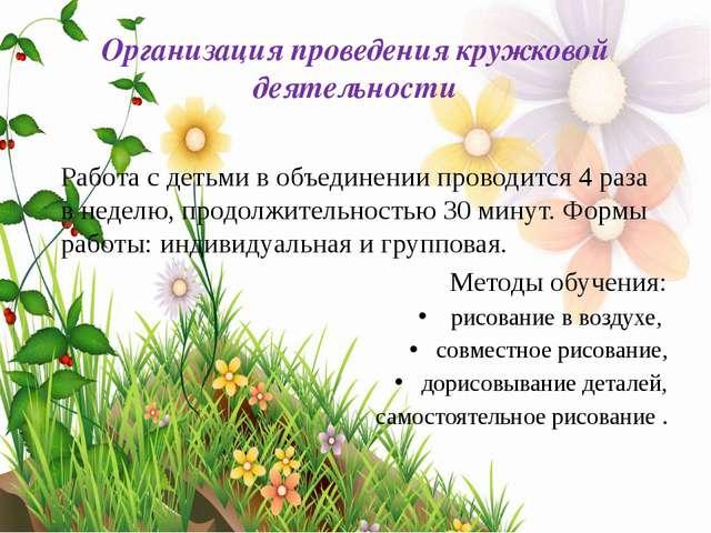 Организация проведения кружковой деятельности Работа с детьми в объединении п...