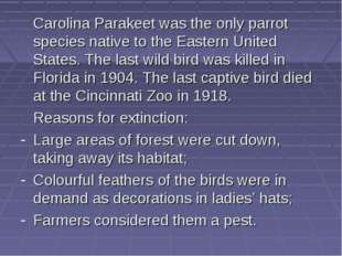 Carolina Parakeet was the only parrot species native to the Eastern United S