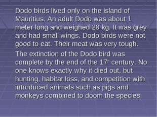 Dodo birds lived only on the island of Mauritius. An adult Dodo was about 1