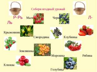 Собери ягодный урожай Р-Рь Малина Черника Л-Ль Крыжовник Смородина Клубника З