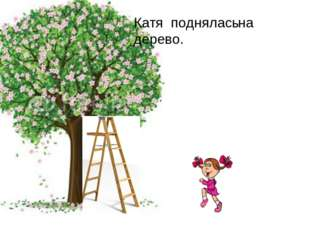 Катя поднялась дерево. на