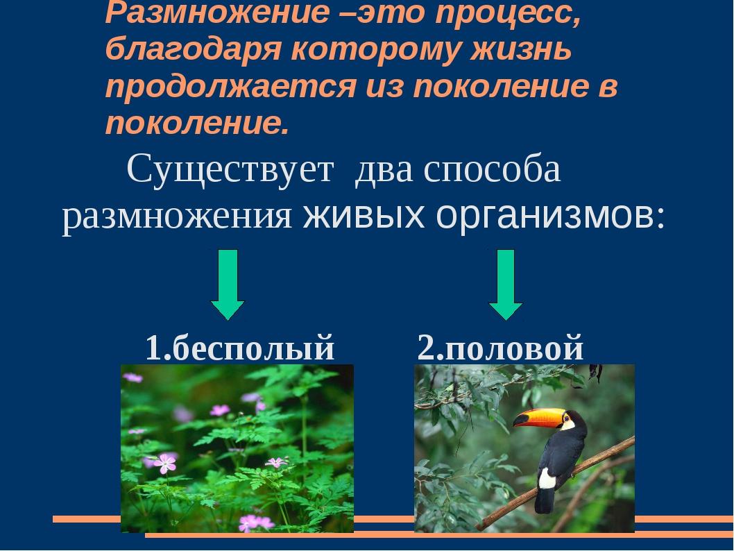 Размножение –это процесс, благодаря которому жизнь продолжается из поколение...