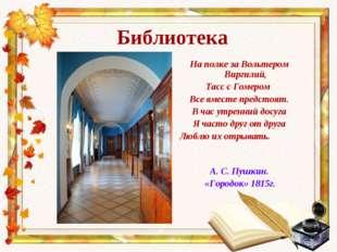 Библиотека На полке за Вольтером Виргилий, Тасс с Гомером Все вместе предстоя