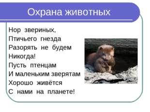Охрана животных Нор звериных, Птичьего гнезда Разорять не будем Никогда! Пуст