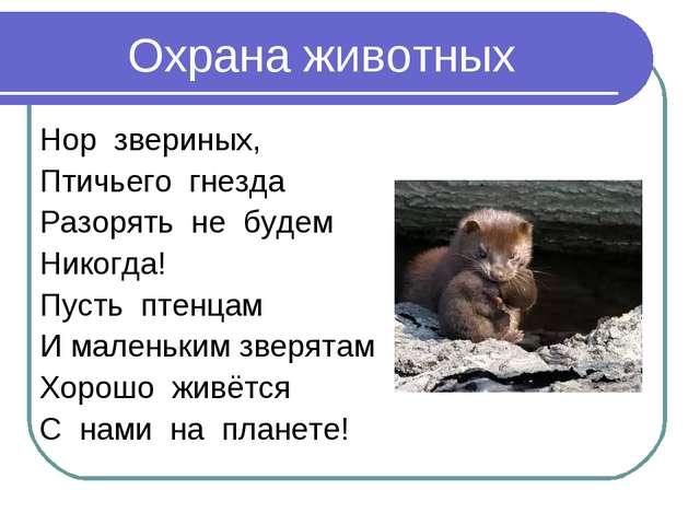 Охрана животных Нор звериных, Птичьего гнезда Разорять не будем Никогда! Пуст...