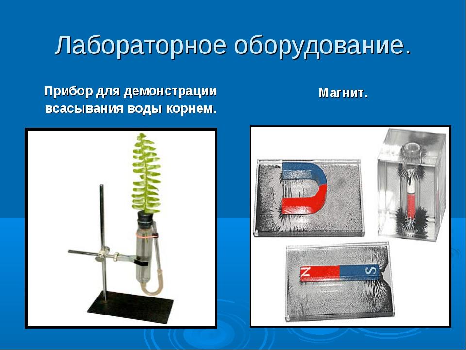 Лабораторное оборудование. Прибор для демонстрации всасывания воды корнем. Ма...