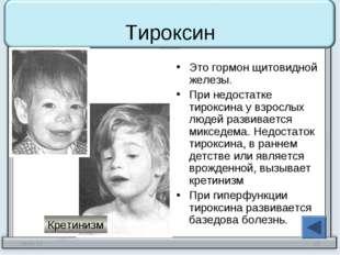 Тироксин Это гормон щитовидной железы. При недостатке тироксина у взрослых лю