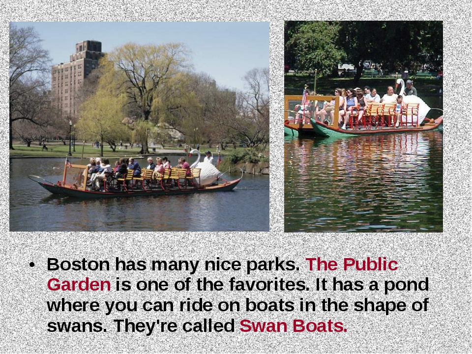 Boston has many nice parks. The Public Garden is one of the favorites. It has...