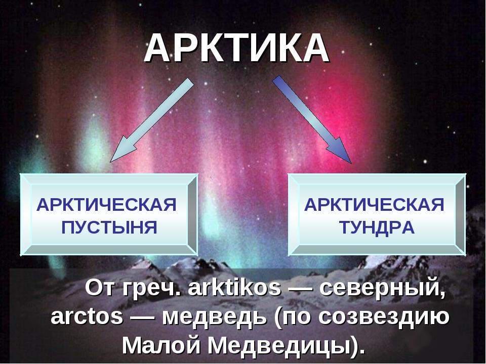 АРКТИКА От греч. arktikos— северный, аrctos— медведь (по созвездию Малой...
