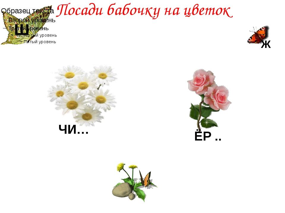 Посади бабочку на цветок Ж ЧИ… Ш ЁР ..