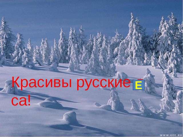 Красивы русские л са! Е