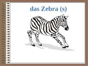 das Zebra (s)