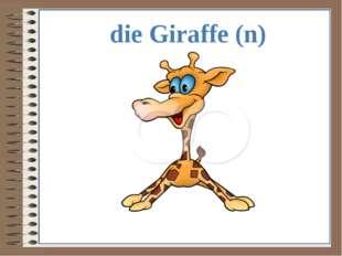 die Giraffe (n)