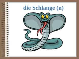 die Schlange (n)