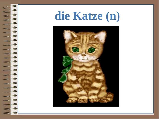 die Katze (n)